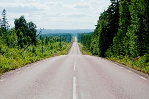 vägen.jpg